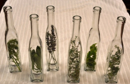 herbs on bottles