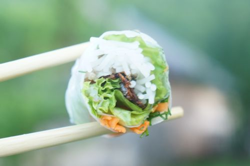 goi cuon ca nuong - chargrilled fished summer roll