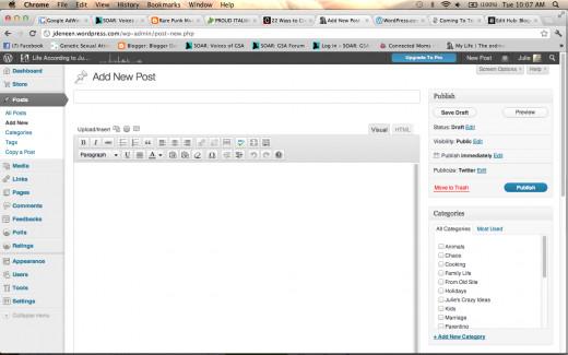 Wordpress blog post creation page.