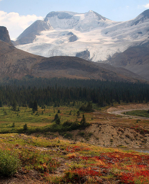The Columbia Icefield is the hydrographic apex of North America.  From this point water flows to three different oceans