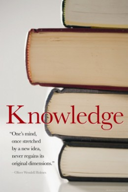 -=Knowledge=-