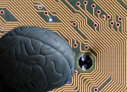 Would you implant a microchip in your brain if it made you more intelligent or creative?