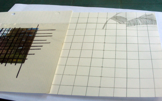 I began the sketch by focusing on one box on the graph.