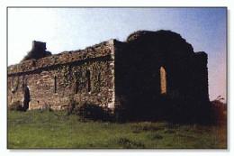 Carrigafoyle church across the road from the castle