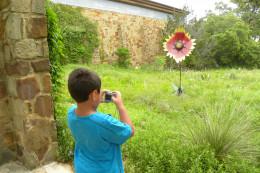 Lady Bird Johnson Wildflower Center  - Austin TX