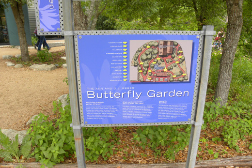 Butterfly Trail - Lady Bird Johnson Wildflower Center  - Austin TX