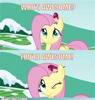 Whose awesome? Your awesome! Dog meme ponified