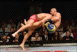 Mixed Martial Arts And UFC Fighting Styles