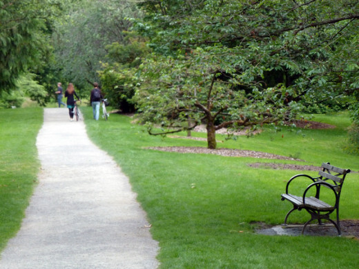 Walkers enjoying Washington Park Arboretum in Seattle, Washington.