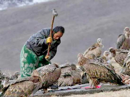 Remains are cut, bones broken then left  open for the elements,vultures to dispose