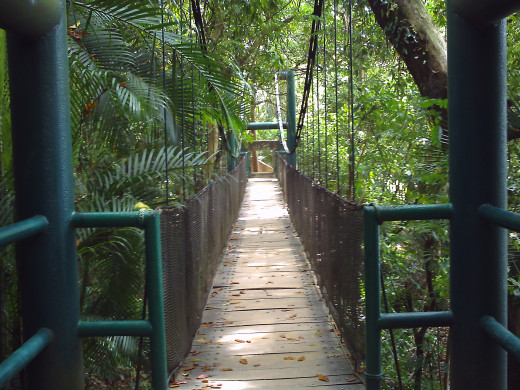 Suspension footbridge, Parque-Museo de La Venta