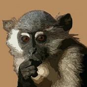 howlermunkey profile image
