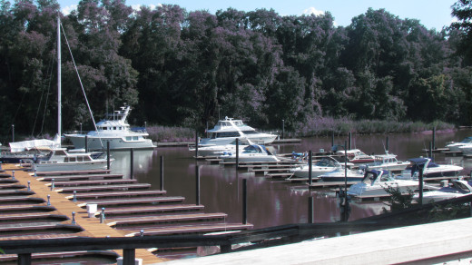 View from the deck of the marina overlooking the C & D Canal at Lums Pond