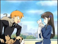 Anime Reviews: Fruits Basket