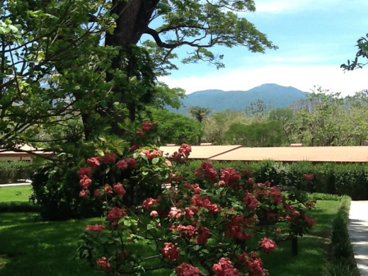 Beautiful landscape at the Hotel Hacienda Gauchipelin