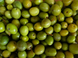 Olives: Tasty and healthy