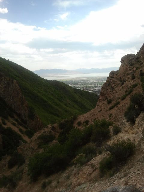 This simple view was hard-won, and foolishly so: I climbed straight up a several hundred feet of loose rock.