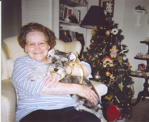 A pet to love can brighten an older person's outlook. My mom, when she was 83, with the schnauzer girl that shared her home. They adored each other.