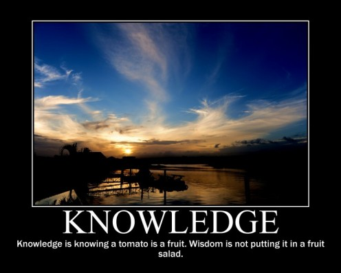 Knowledge Brings Sucess