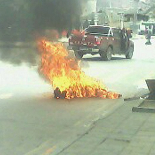 """Palden Choetso, 35, nun; self immolated on November 3rd, 2011."" SFTHQ at flickr.com"