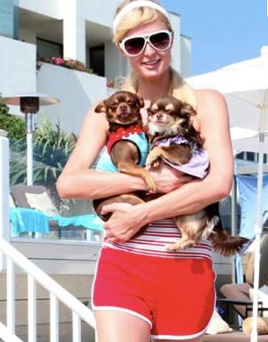 Paris Hilton with Tokyo Blu & Harajubu Bitch