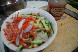 Cucumber, carrot, purple onion and spring onion chopped.