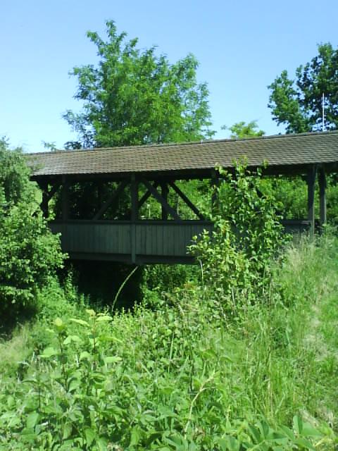 the walking wooden bridge