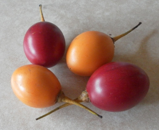 tamarillo fruit how to eat