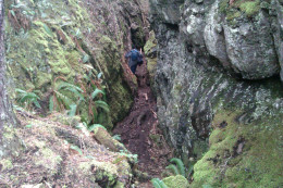 Having successfully navigated the log bridge at the trail head, this narrow gorge appears around the next bend.
