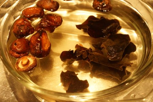 soak mushroom and black fungus in warm-hot water