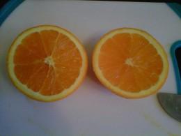 Cut the grapefruit, oranges, lime, and lemon in half.