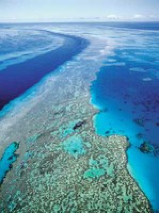 Great Barrier Reefs