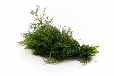 Fresh Dill is best