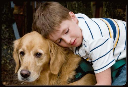 Autistic kids often love animals