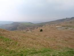 Roseberry Common, another aspect of the walk