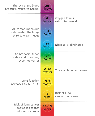 What happens to your body