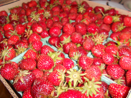 "Fresh Farm Strawberries sold as a ""jam flat"" will save $'s on berries."