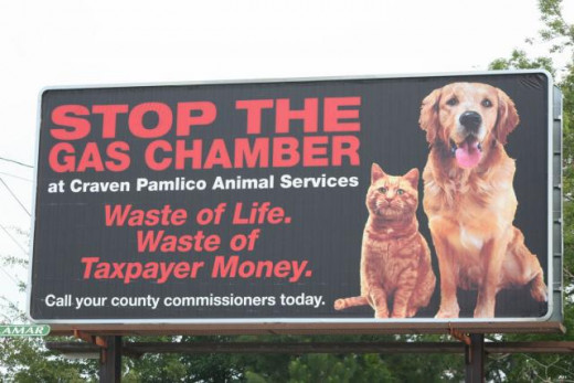Stop gassing dogs.  It's a cruel way.