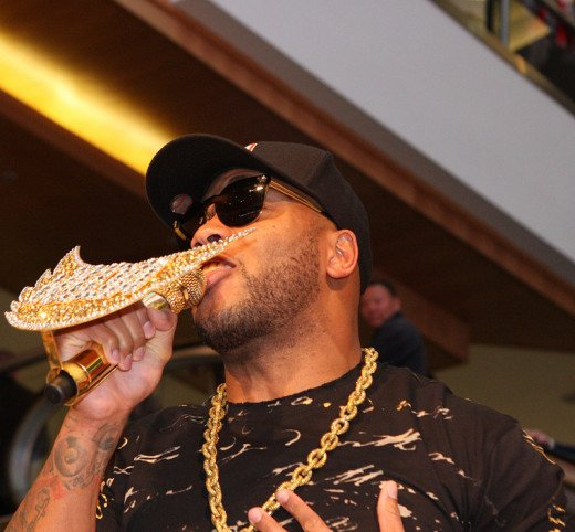 "Flo Rida: A great example of today's ""hip hop"" music (more appropriately known as ""rap"").  He and his music is full of references to wealth, money and riches."