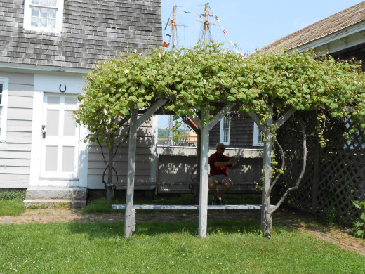 A grape arbor in the backyard of one of the historic homes of the village.