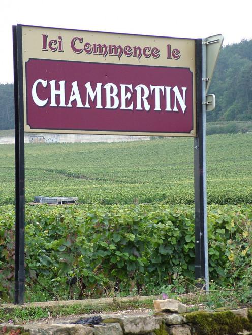 Chambertin Vineyard