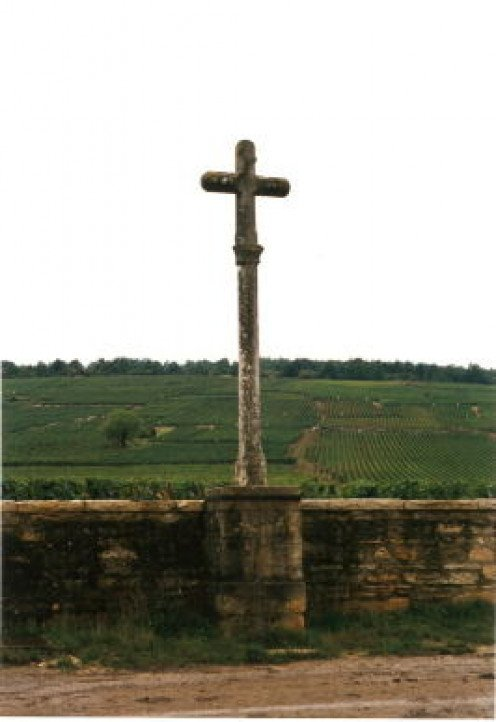 Romanee Conti Vineyard
