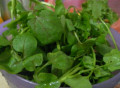 Easy Healthy Watercress Soup Recipe