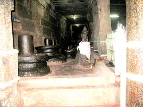Not a single flower is kept on these Shiva Lingas.
