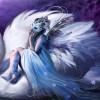 Gabriela331 profile image