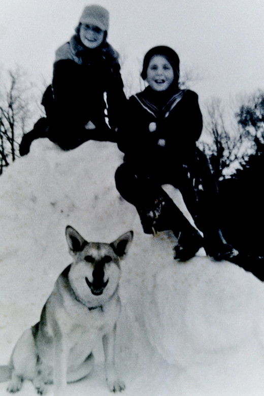 My brothers and Sheba - 1950s - at our home in Wisconsin