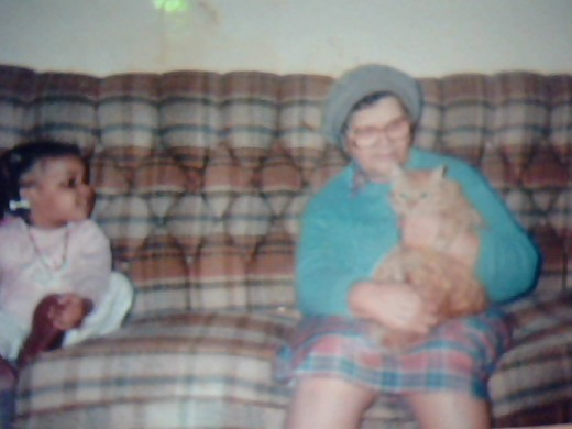 Great Grandma Nancy, Tabby the cat and Andy Fandy