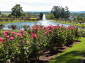 A Visit To The Hershey Rose Gardens