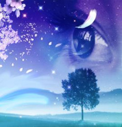 Lost Dream (Poem)