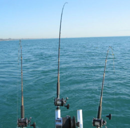 There are many individuals and companies who offer fishing adventures in charter boats, but the range of prices all begin at around $500 for half a day.